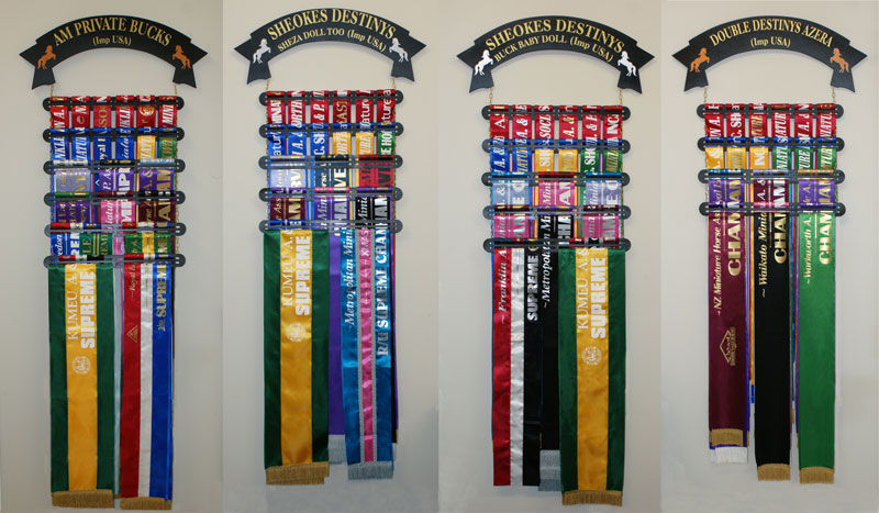 Dog Show Ribbon Display Rack